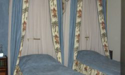 elegant blue canopies with palma and elephant